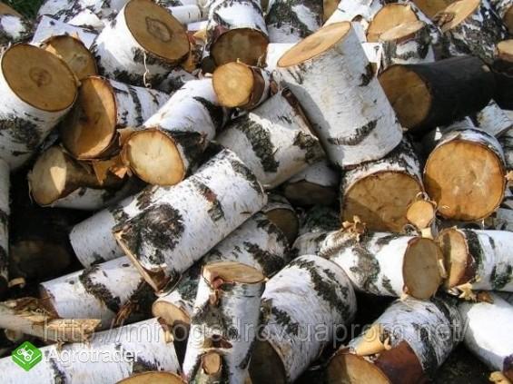 Ukraina.Drewno opalowe,15 zl/m3 + zrzyny 1 zl/m3 - zdjęcie 1
