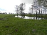 Działka siedliskowa, Wieprzyce