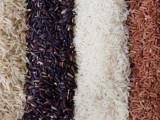 Ryż bezpośrednio od producenta, najnizsza cena.