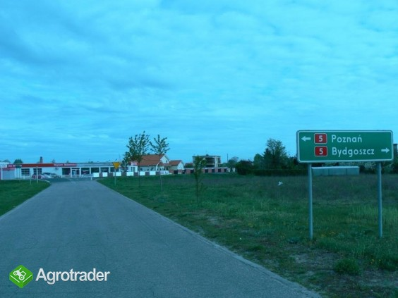 3 ha k. Bydgoszczy - zdjęcie 1