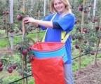 Pojemnik do zbioru jabłek i innych owoców - TYROLB
