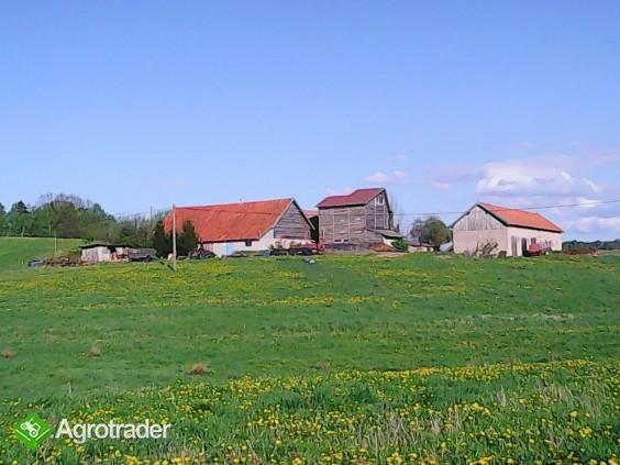 Gospodarstwo rolne - zdjęcie 1