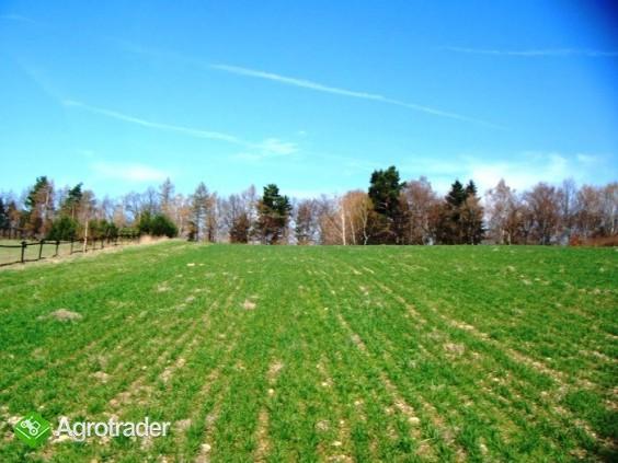 Działka budowlano-rolna 29 km od Krakowa z widokiem na góry - zdjęcie 2