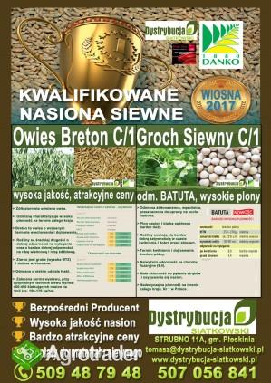 Kwalifikowane nasiona siewne grochu siewnego odm. BATUTA C/1 - zdjęcie 2