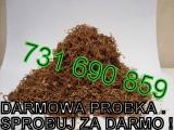 Tyton tytoń Uczciwy towar, uczciwa transakcja. Wysoka jakość DARMOWA P
