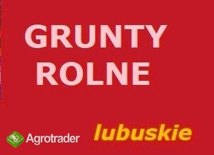 Grunty ( spółki ) od 100 - 500 ha sprzedamy