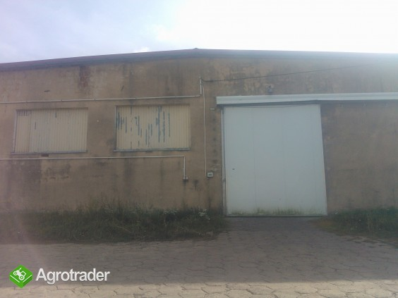 Sprzedam gospodarstwo rolne 87 ha + budynki  zbożowo-hodowlane - zdjęcie 3