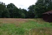 18 ha , gospodarstwo eko Lubuskie sprzedam