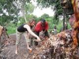 Beninese duchowość (uzdrowiciel-seeing .......)