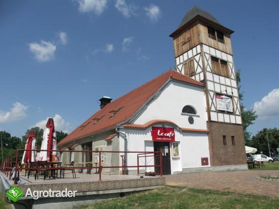Lokal usługowo-gstronomiczny w centrum Lubina