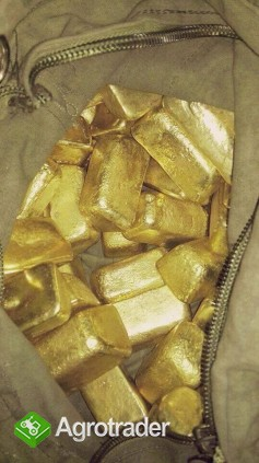 Złoty pył, złoto i złoto ingote na sprzedaż