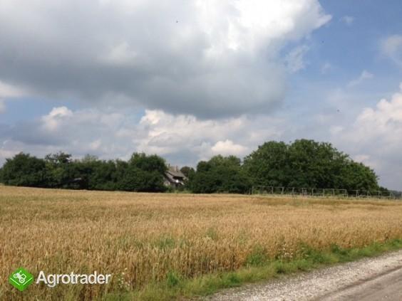 gospodarstwo rolne/ogrodnictwo  - zdjęcie 6