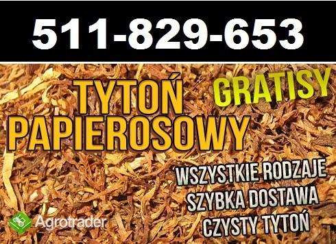 Najlepszej jakości Tytoń papierosowy Tylko 65 zł 1 KG! Wysyłka cała PL