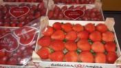 sprzedam truskawki