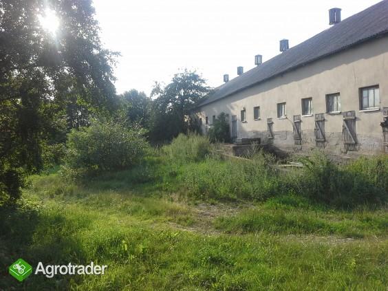 Gospodarstwo rolne na Suwalszczyźnie - zdjęcie 6