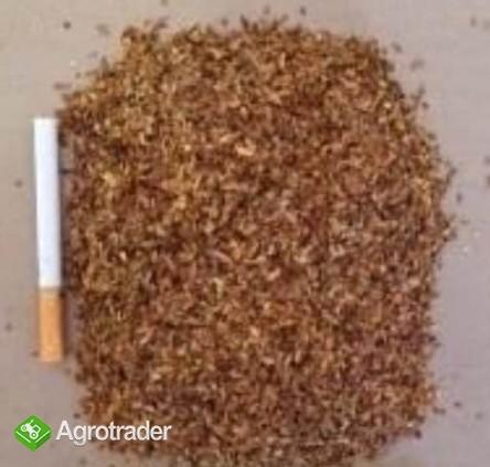 Liscie tytoniu, strips, całe, virgnia, scraps, american blend, dowóz. - zdjęcie 6