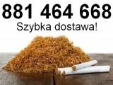 Tani tytoń papierosowy, szybki dowóz, gratisy, stała współpraca!