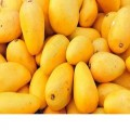 Wholesale Fresh Mango,Red star apples