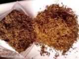 tyton rewelacyjna jakość i super cena