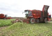 Ukraina. Ziemniaki 0,25 zl/kg, siano 70 zl/tona.Gospodarstwo zamienie