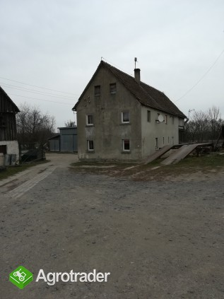 Gospodarstwo rolne 3,1 h Wigancice Żytawskie gm. Bogatynia - zdjęcie 3