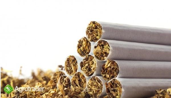 tyton lekki wydajny 65zl kg !!  - zdjęcie 3