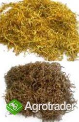 tyton kg 65zł szybka wysyłka lub odbior osobisty lekki puszysty tyton - zdjęcie 1