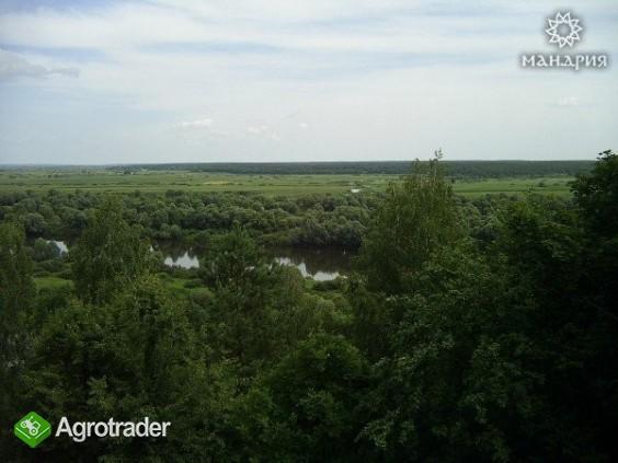 Ukraina.Staw rybny35ha+torfowiska30ha.Wydzierzawie - zdjęcie 2