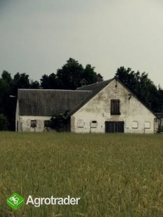 ferma drobiu  tanio - zdjęcie 1