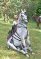 UkrainaStajnia koni w malowniczej miescowosciTanio