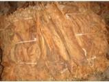 Tytoń liscie tytoniu burley virginia
